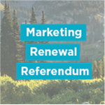 Marketing Renewal Referendum