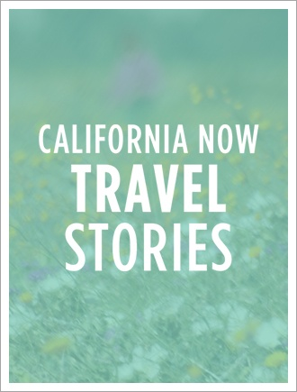 Travel Stories co-op